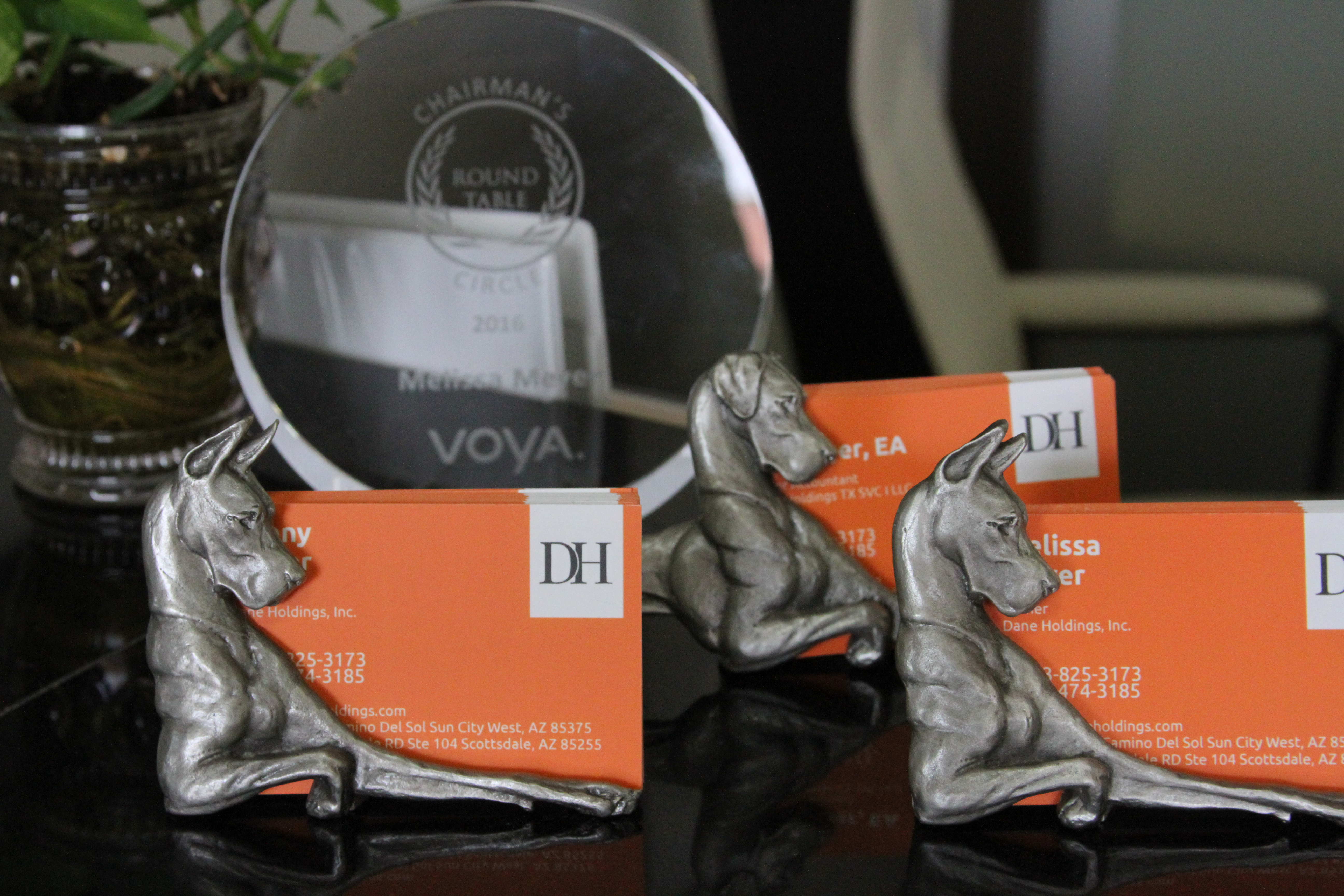 Great Danes, Awards and Business cards.