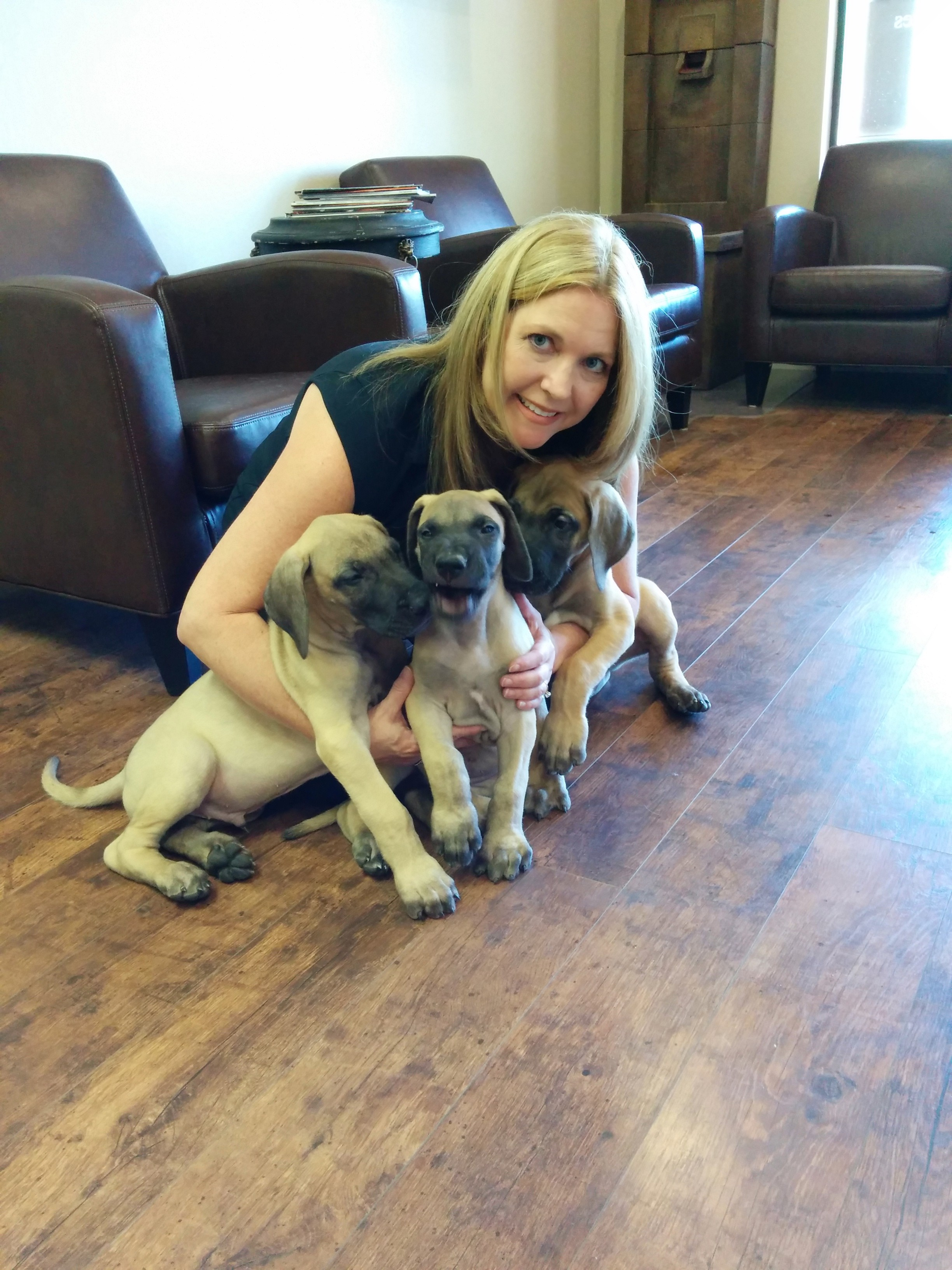 Melissa Meyer with Puppy Great Danes